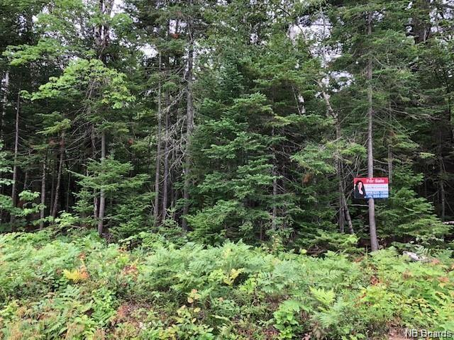 109.5 Acres Route 430, Miramichi, New Brunswick  E1V 4Z3 - Photo 2 - NB050779