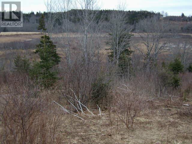 Lot Pleasant Valley, Yarmouth, Nova Scotia  B0W 3E0 - Photo 2 - 4868156