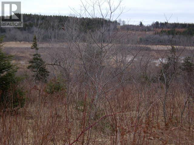 Lot Pleasant Valley, Yarmouth, Nova Scotia  B0W 3E0 - Photo 3 - 4868156