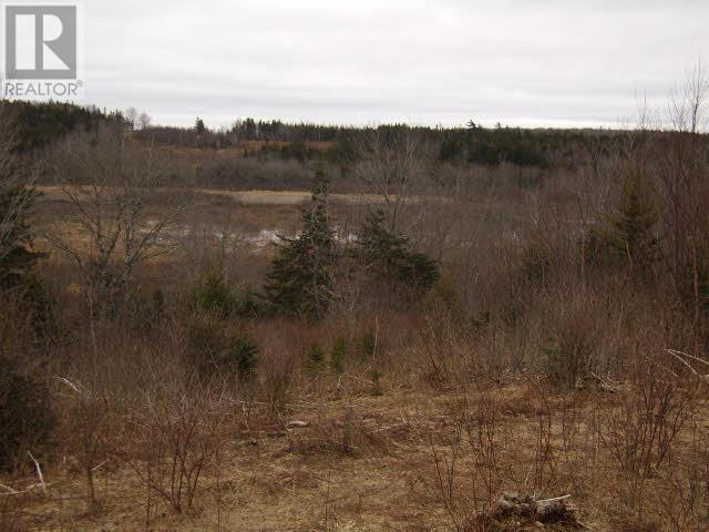 Lot Pleasant Valley, Yarmouth, Nova Scotia  B0W 3E0 - Photo 4 - 4868156