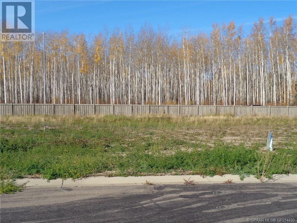 21 Bear Creek Drive, High Level, Alberta  T0H 1Z0 - Photo 1 - GP214490