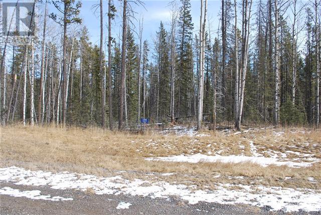 1269 Tamarack Trail, Nordegg, Alberta  T0M 2H0 - Photo 1 - CA0080677