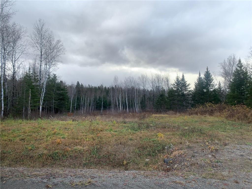 158 Caron Road, Dsl De Drummond/dsl Of Drummond, New Brunswick  E3Y 1R2 - Photo 3 - 16-9978