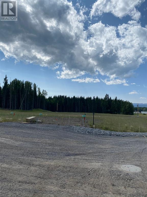 725 Shale  Court, Nordegg, Alberta  T0M 2H0 - Photo 2 - A1025140
