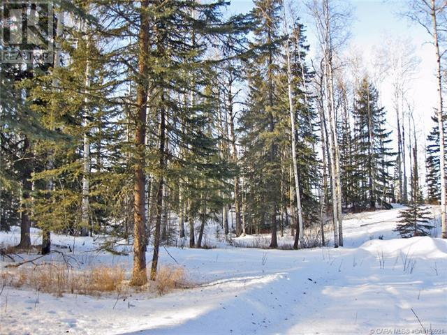 5 Ridgeland Road, Rural Clearwater County, Alberta  T4T 2A4 - Photo 5 - CA0158921