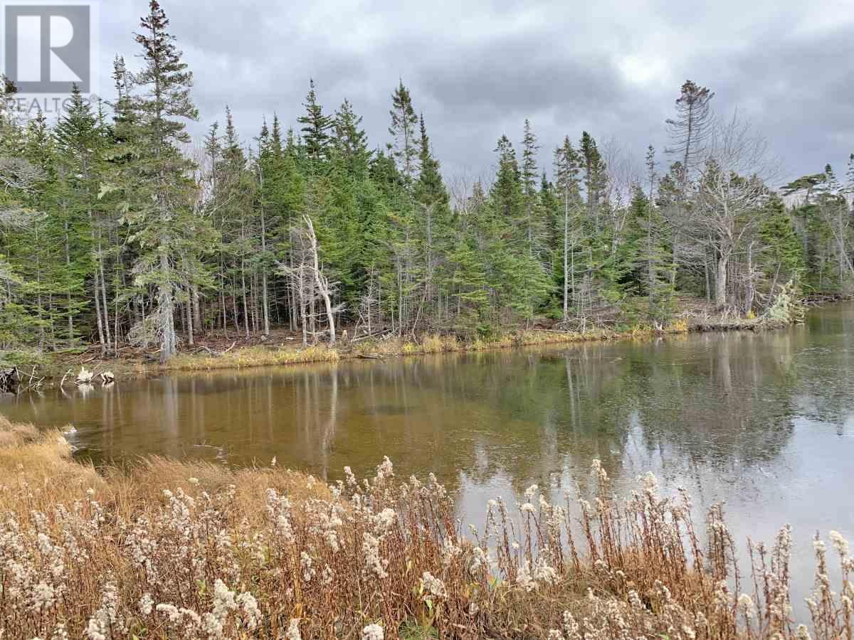 115 Michael Vogt Drive, Evans Island, Hay Cove, Nova Scotia  B0E 3B0 - Photo 4 - 201927077