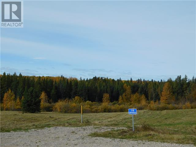 122 Blueberry Meadows Lane, Rural Clearwater County, Alberta  T0M 1H0 - Photo 13 - CA0180592