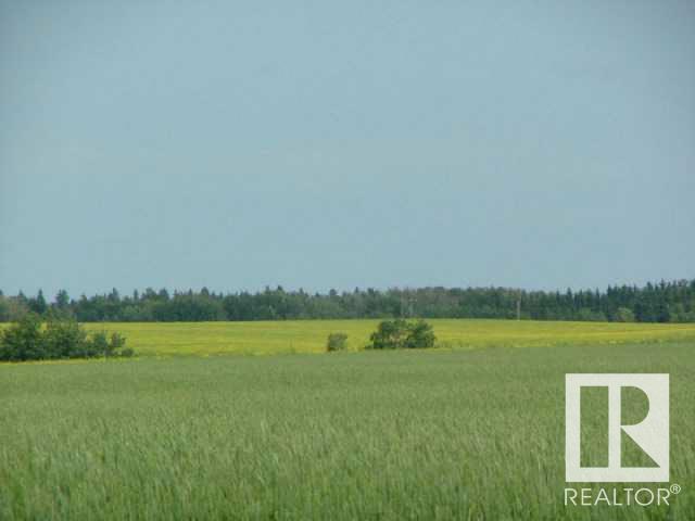 A51069 Hwy 814, Beaumont, Alberta  T4X 0K4 - Photo 3 - E4221964