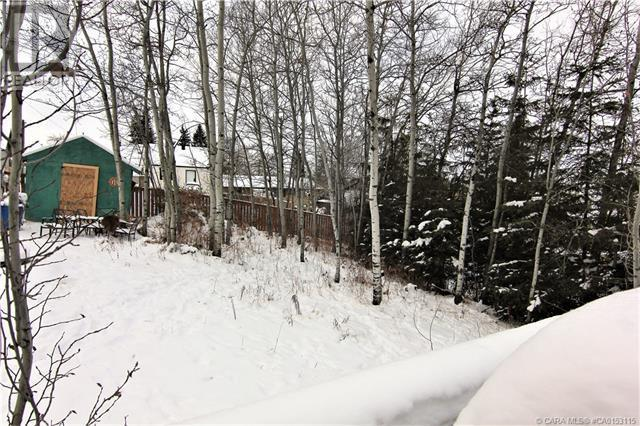 1858 22 Avenue, Delburne, Alberta  T0M 1V0 - Photo 22 - CA0153115