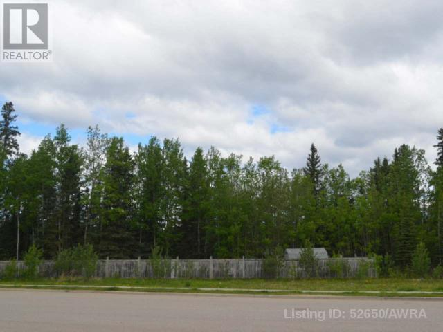 4020 Bradwell Street, Hinton, Alberta  T7V 2G4 - Photo 1 - AW52650