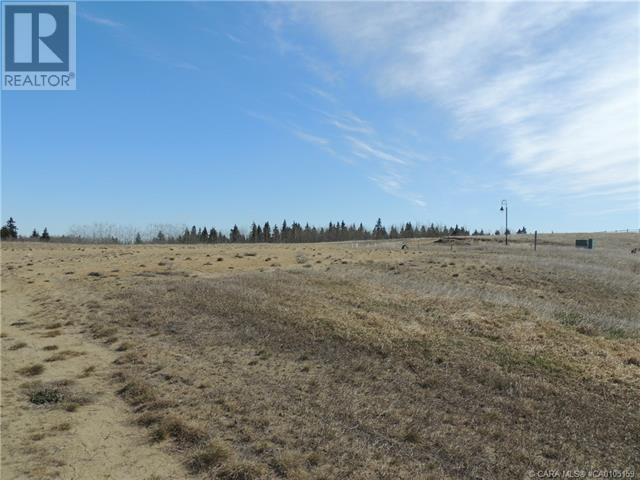 406 Sand Hills Drive, Rural Ponoka County, Alberta  T4J 0B3 - Photo 9 - CA0105159