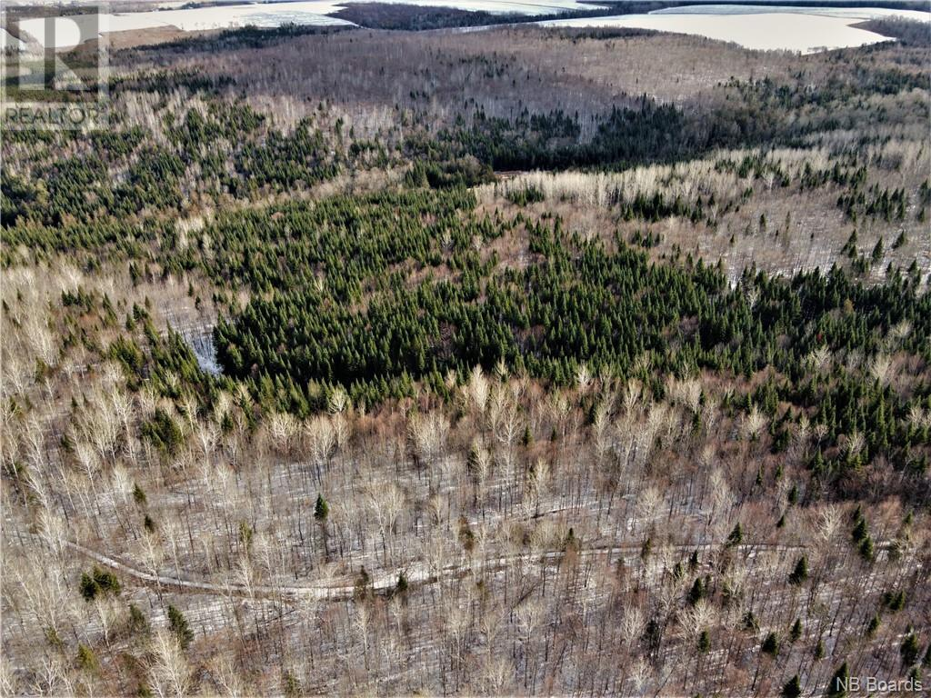 Lot Route 103, Simonds, New Brunswick  E7P 2X9 - Photo 7 - NB051838