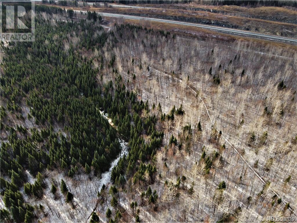 Lot Route 103, Simonds, New Brunswick  E7P 2X9 - Photo 9 - NB051838