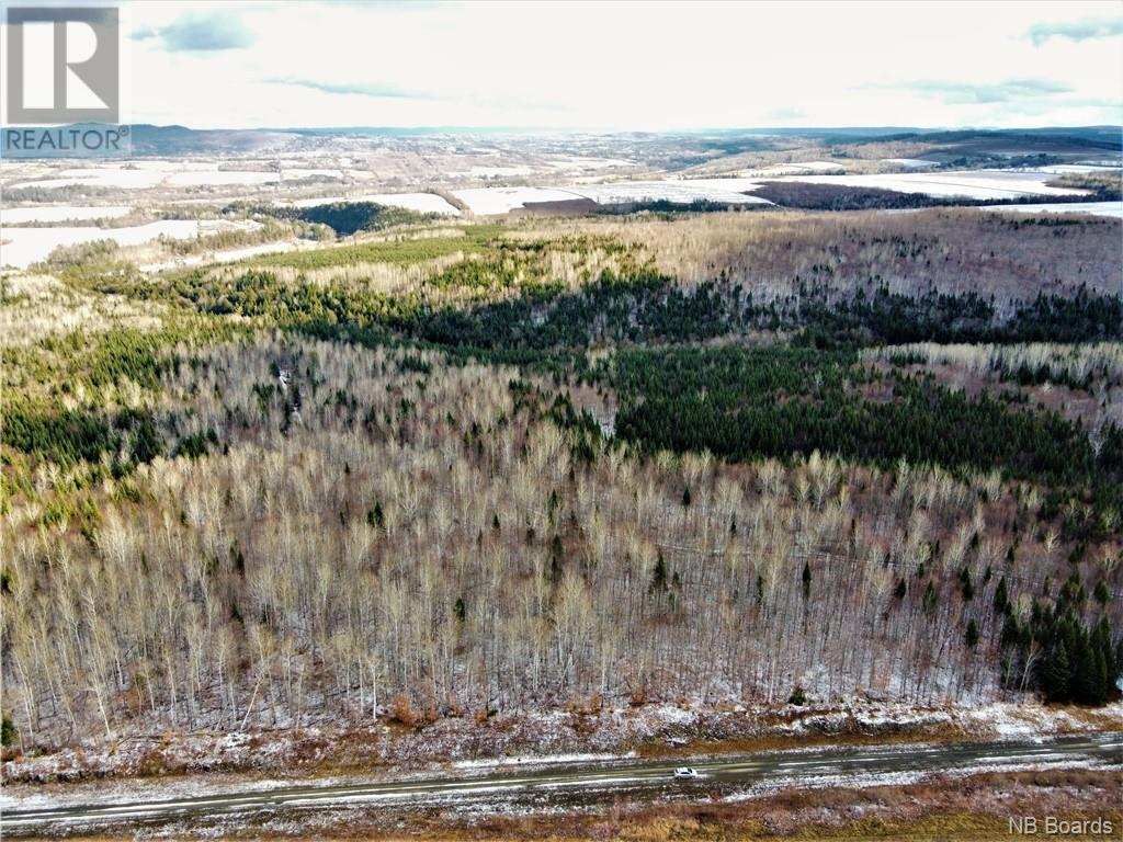 Lot Route 103, Simonds, New Brunswick  E7P 2X9 - Photo 1 - NB051838