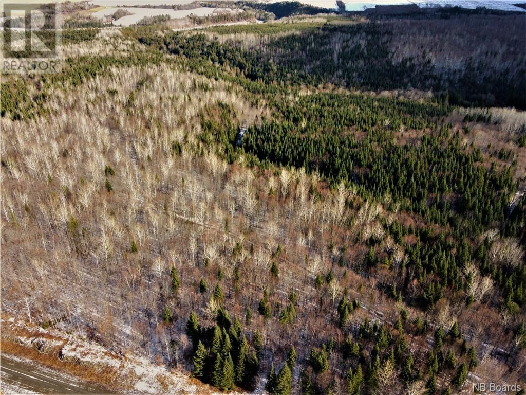 Lot Route 103, Simonds, New Brunswick  E7P 2X9 - Photo 6 - NB051838