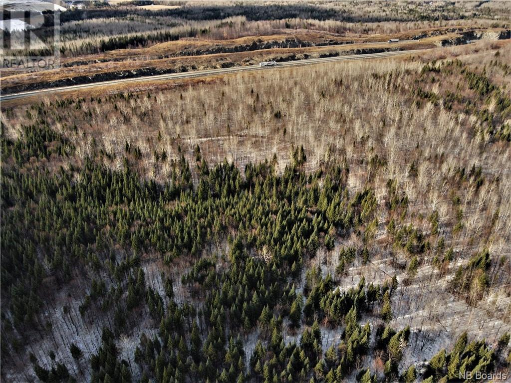Lot Route 103, Simonds, New Brunswick  E7P 2X9 - Photo 10 - NB051838