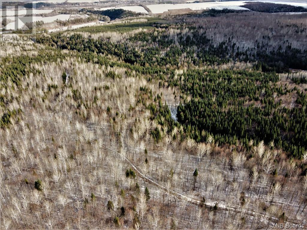Lot Route 103, Simonds, New Brunswick  E7P 2X9 - Photo 8 - NB051838