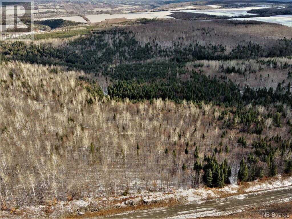 Lot Route 103, Simonds, New Brunswick  E7P 2X9 - Photo 5 - NB051838