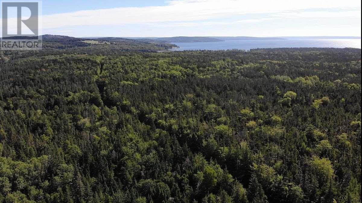 Red Point West Road, B2c 1g4, Mckinnons Harbour, Nova Scotia  B2C 1G4 - Photo 29 - 202018107