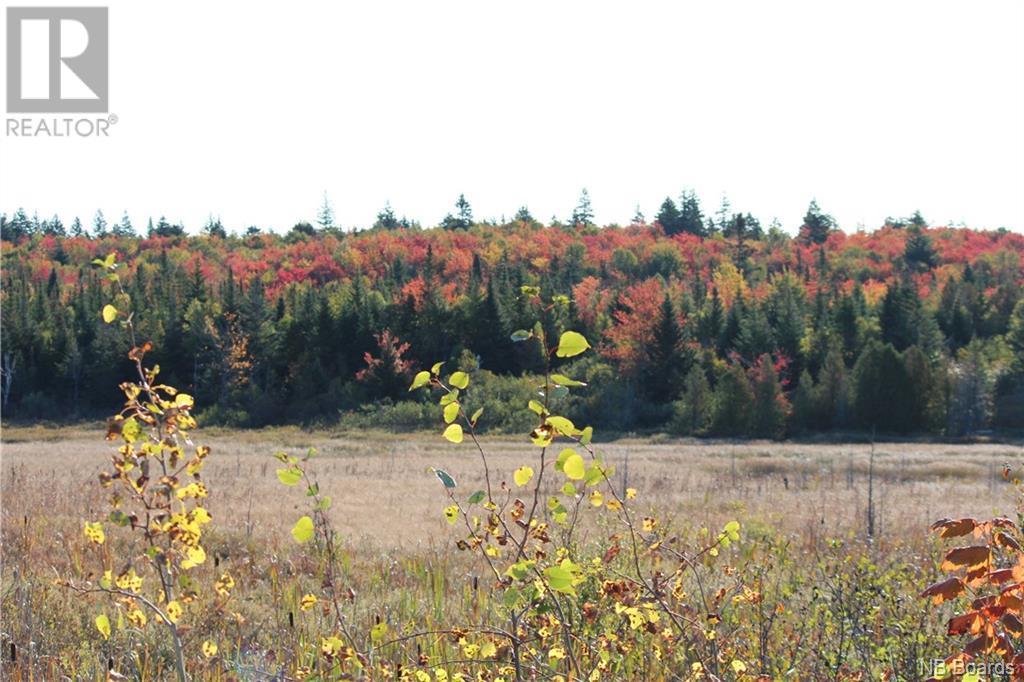 - Route 1 Fox Farm Exit #133, Saint John, New Brunswick  E2H 2X2 - Photo 3 - NB034832