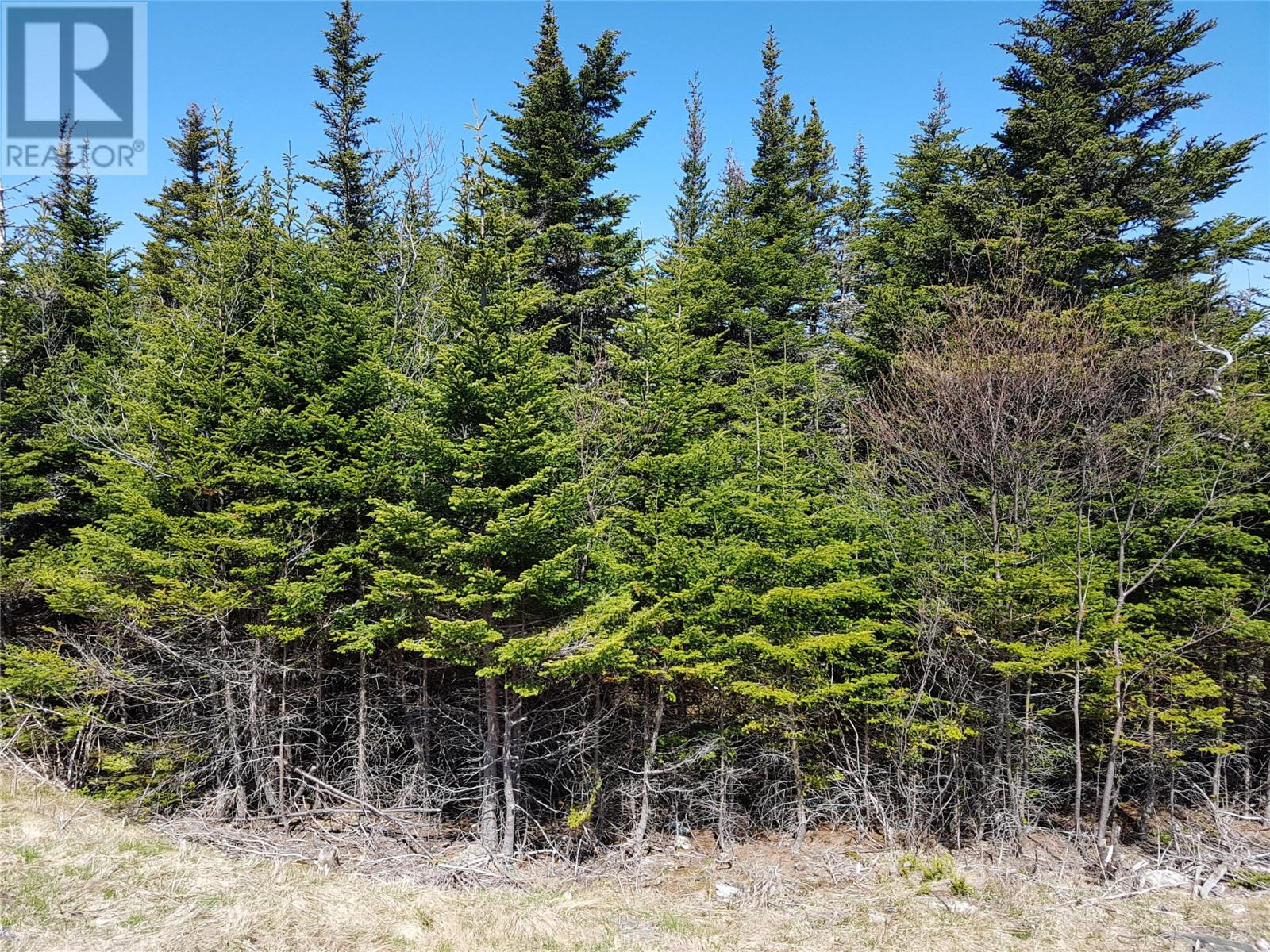 0 Southern Shore Highway in St John S - Vacant Land For Sale : MLS# 1224533 Photo 9