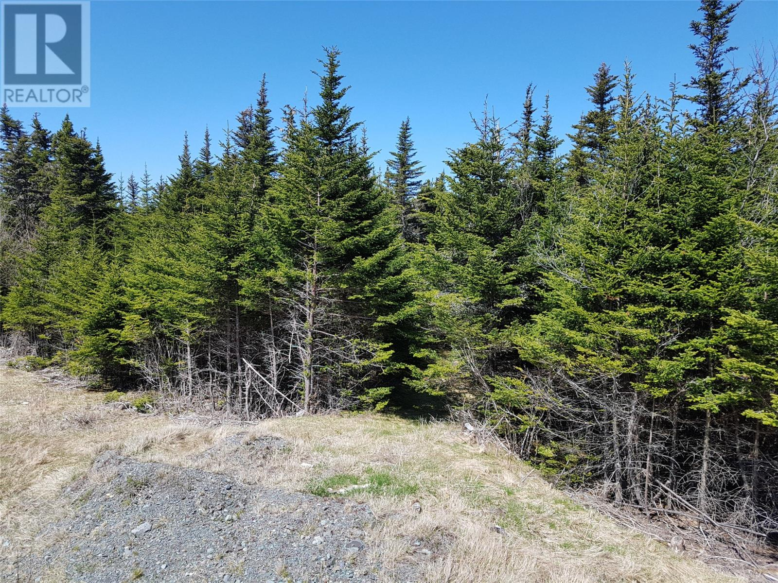 0 Southern Shore Highway in St John S - Vacant Land For Sale : MLS# 1224533 Photo 10