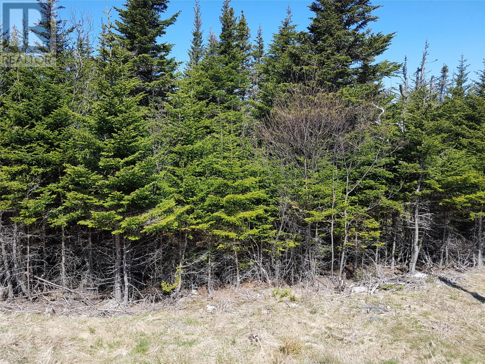 0 Southern Shore Highway in St John S - Vacant Land For Sale : MLS# 1224533 Photo 3