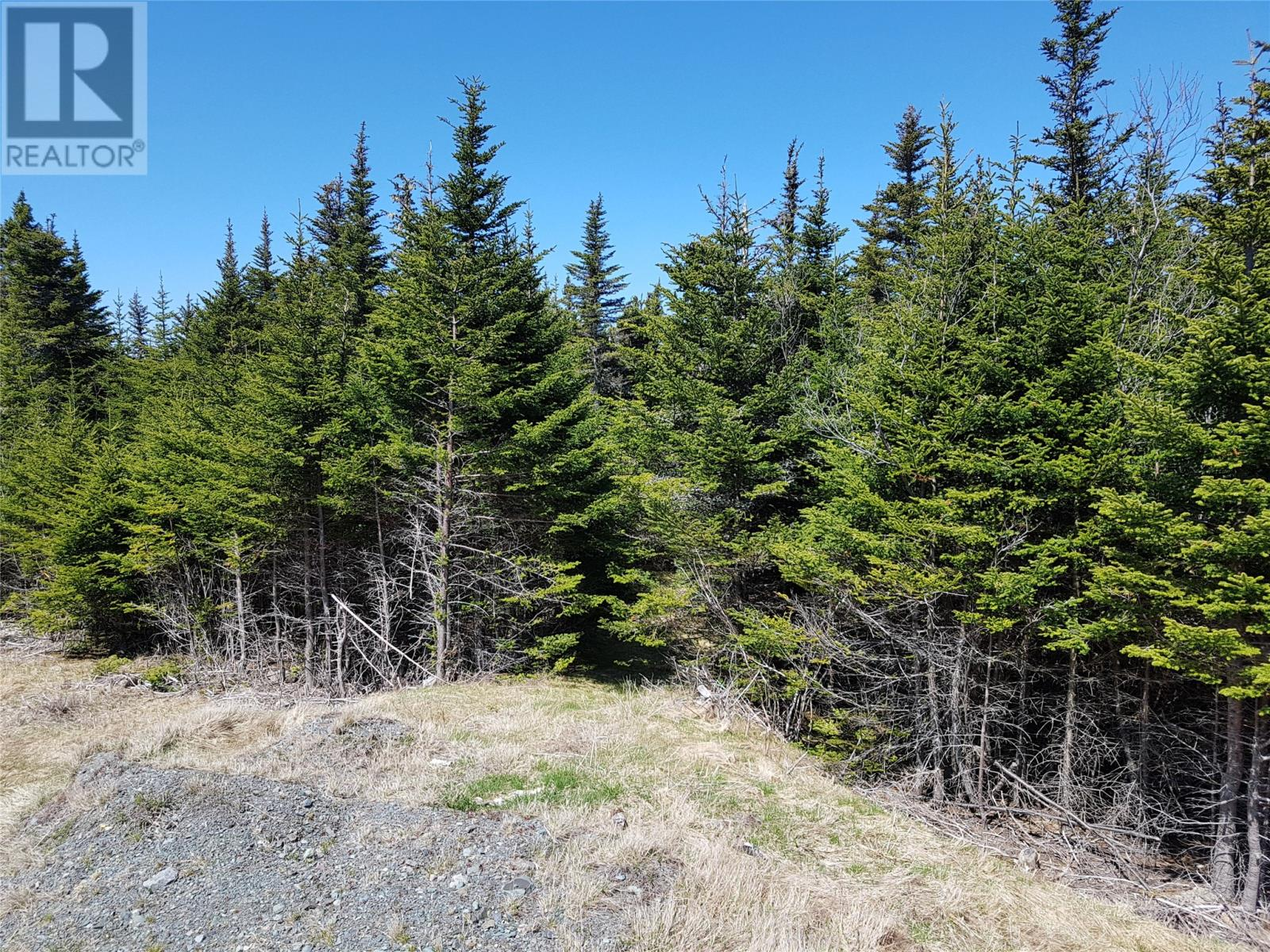 0 Southern Shore Highway in St John S - Vacant Land For Sale : MLS# 1224533 Photo 4