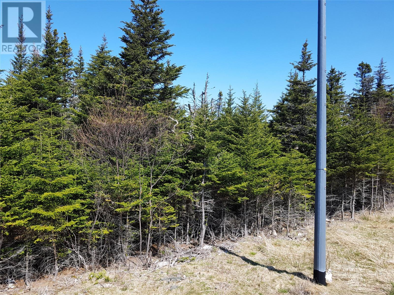 0 Southern Shore Highway in St John S - Vacant Land For Sale : MLS# 1224533 Photo 8