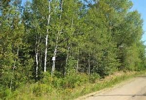 63220 433 Range Rd, Rural Bonnyville M.d., Alberta  T0A 0B0 - Photo 1 - E4224718