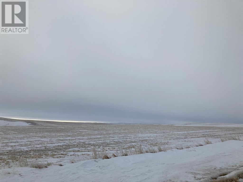 Rural Special  Areas 3, Sibbald, Alberta  T0J 3E0 - Photo 9 - A1055033