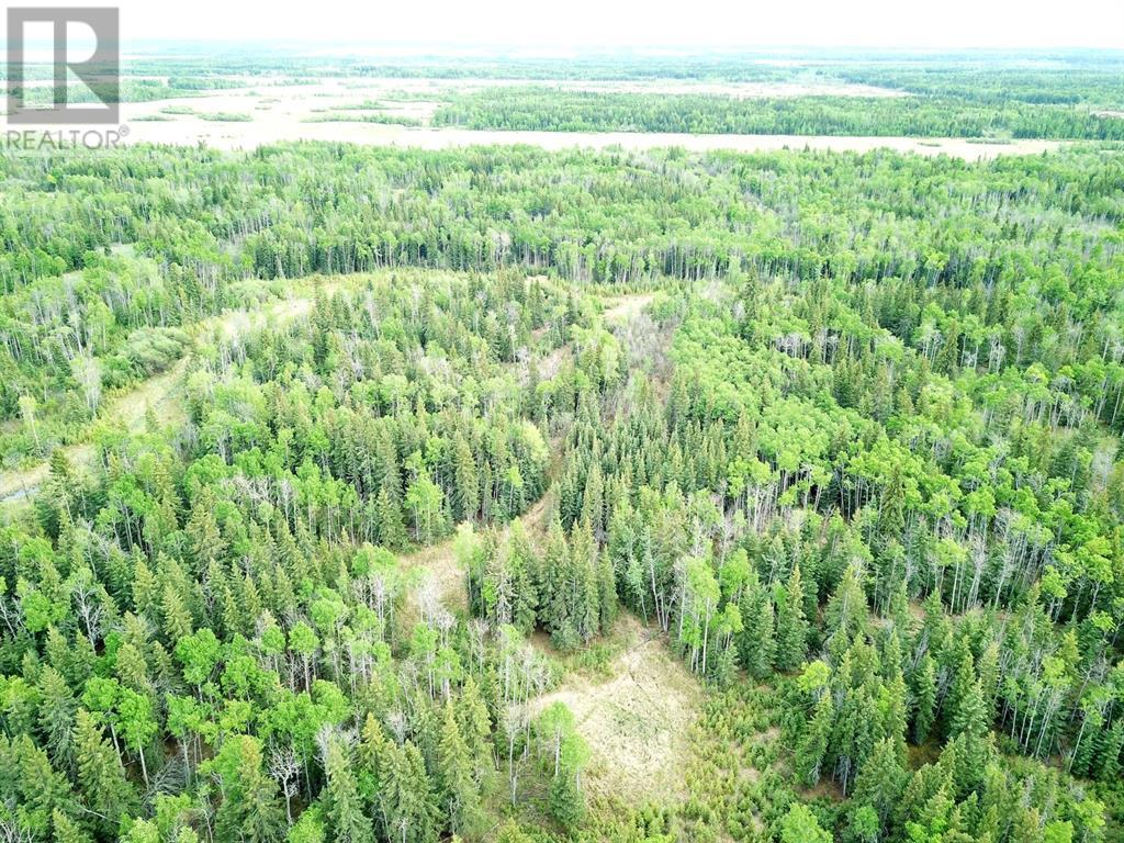 Nw-19-81-9-W6 Highway 681, Rural Saddle Hills County, Alberta  T0H 3V0 - Photo 4 - GP205014
