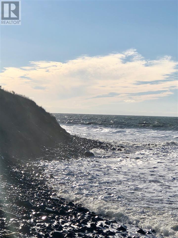 Main Shore Road, Port Maitland, Nova Scotia  B0W 2V0 - Photo 3 - 202001756