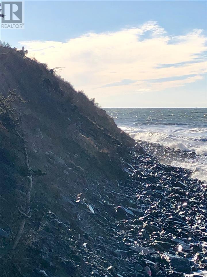 Main Shore Road, Port Maitland, Nova Scotia  B0W 2V0 - Photo 4 - 202001756