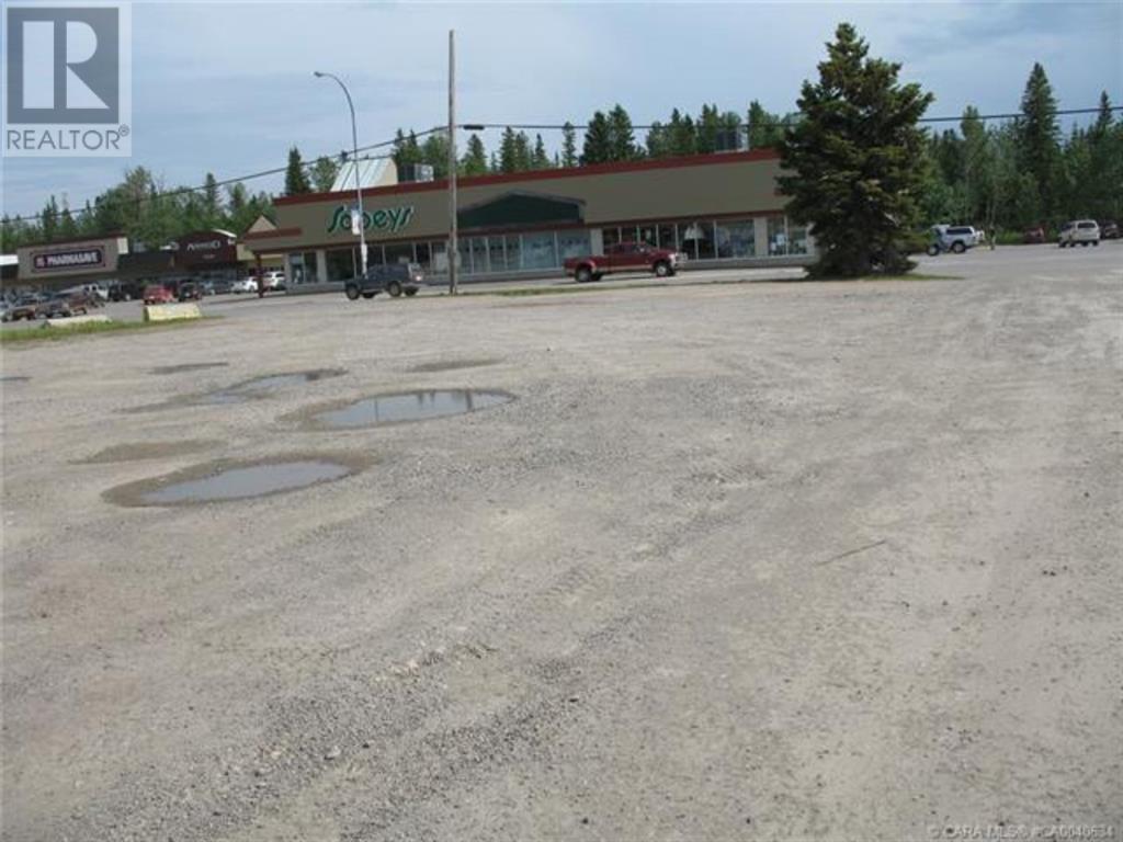 556 Main Avenue W, Sundre, Alberta  T0M 1X0 - Photo 23 - A1059004