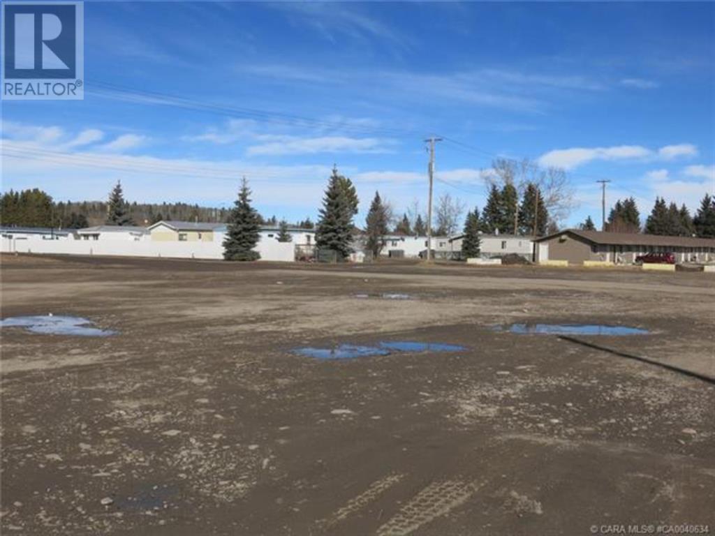 556 Main Avenue W, Sundre, Alberta  T0M 1X0 - Photo 21 - A1059004
