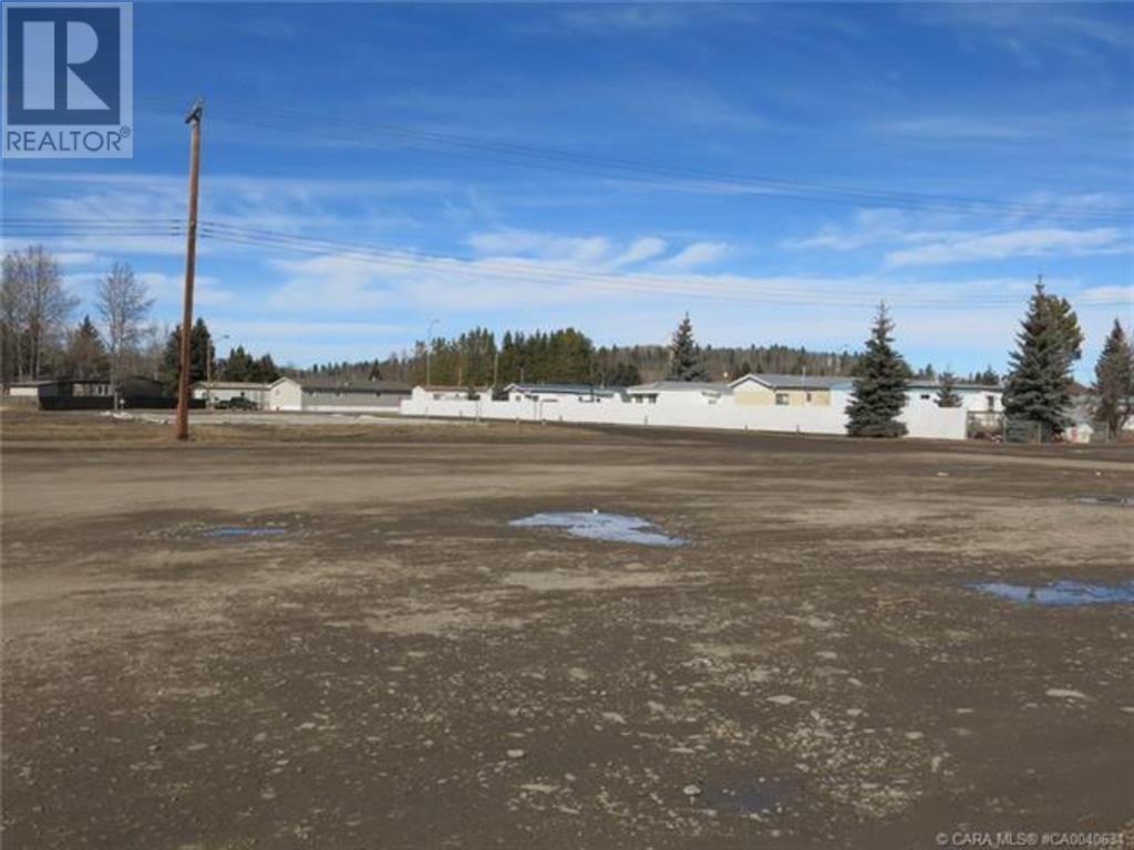 556 Main Avenue W, Sundre, Alberta  T0M 1X0 - Photo 27 - A1059004