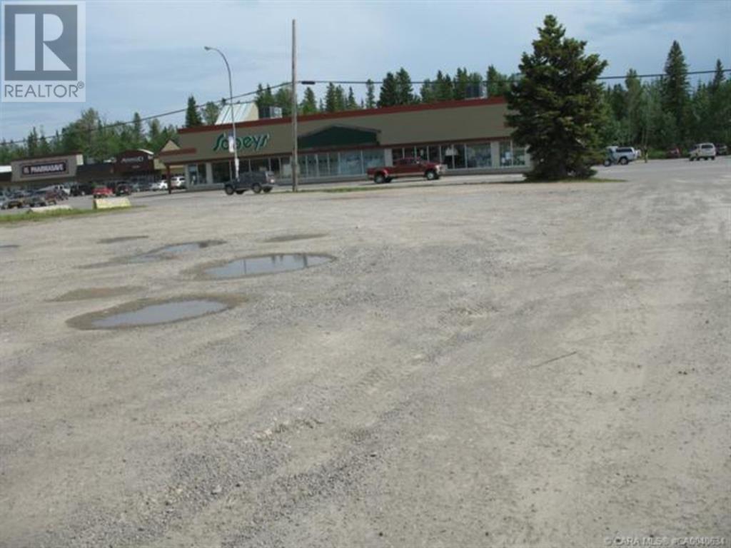 556 Main Avenue W, Sundre, Alberta  T0M 1X0 - Photo 3 - A1059004