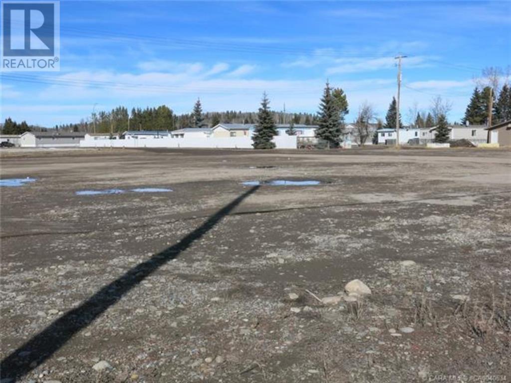 556 Main Avenue W, Sundre, Alberta  T0M 1X0 - Photo 10 - A1059004