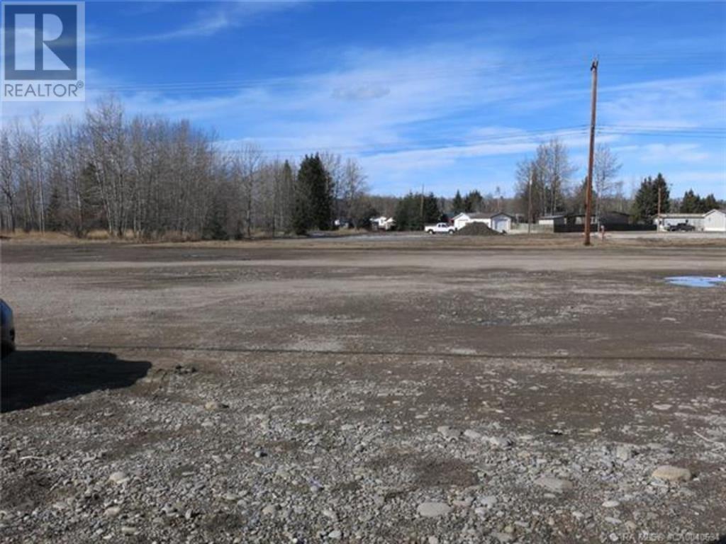556 Main Avenue W, Sundre, Alberta  T0M 1X0 - Photo 9 - A1059004