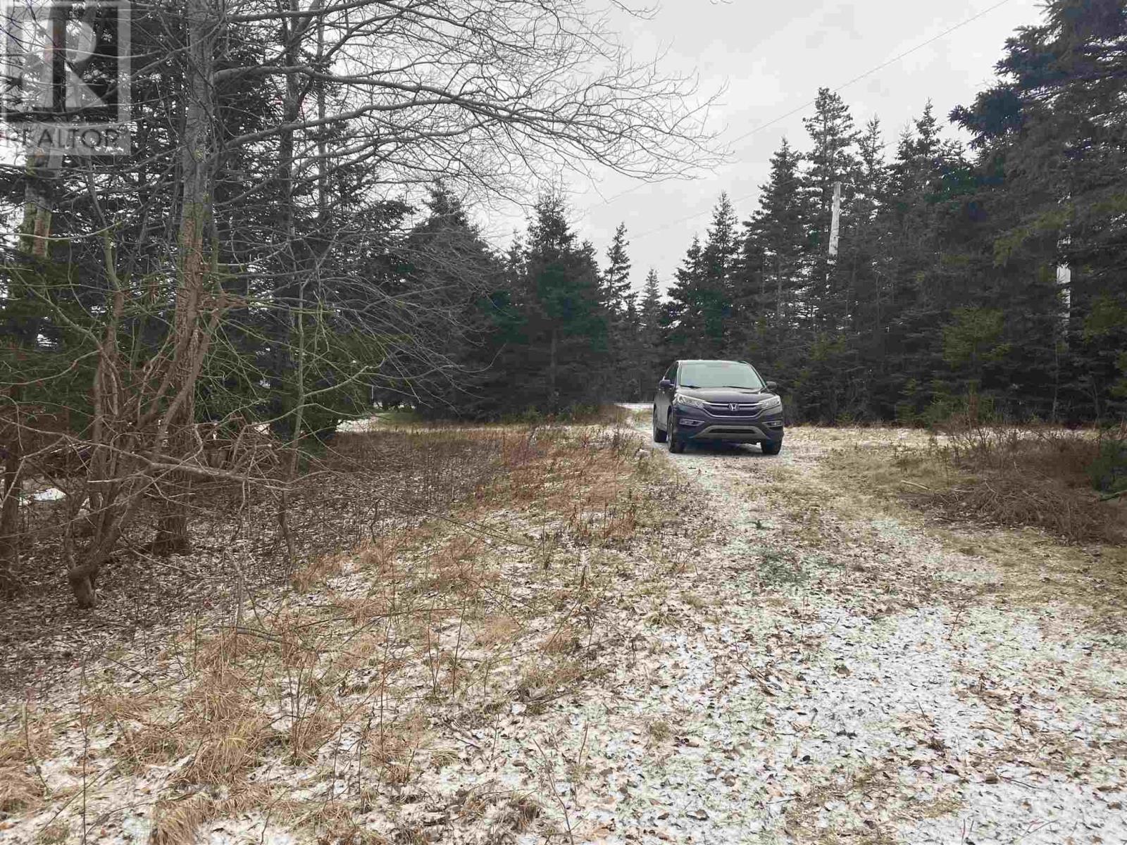 1727 Highway 206, West Arichat, Nova Scotia  B0E 3J0 - Photo 14 - 202101595
