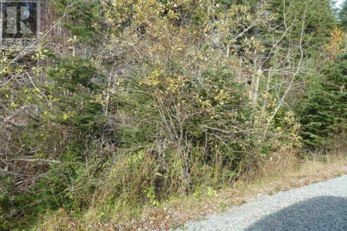 Pleasant Hill Road, Port Hastings, Nova Scotia  B9A 1X7 - Photo 3 - 202005094