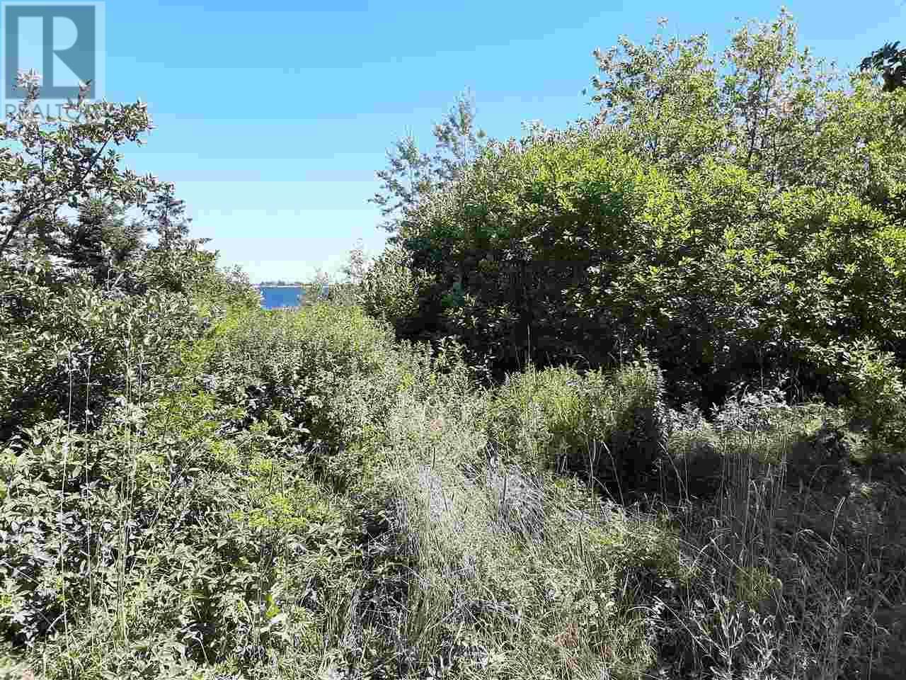 Lot Long Cove Road, Port Medway, Nova Scotia  B0J 2T0 - Photo 5 - 202017267