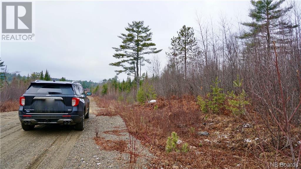 Lot #5 Route 740, Heathland, New Brunswick  E3L 5C1 - Photo 2 - NB053418