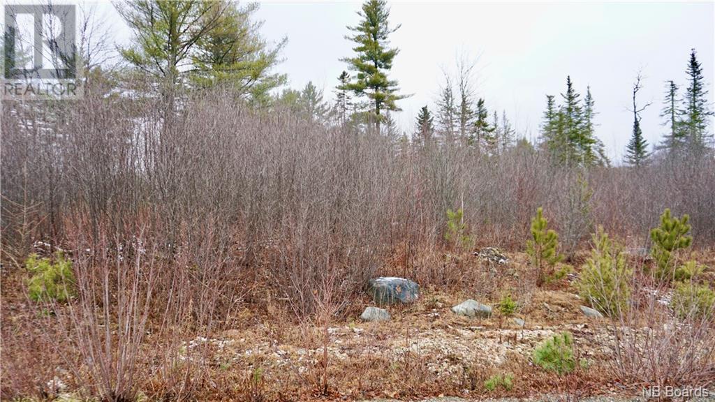 Lot #5 Route 740, Heathland, New Brunswick  E3L 5C1 - Photo 4 - NB053418