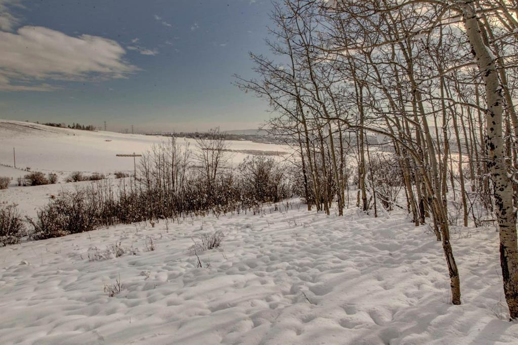 87 Campbell Drive, Rural Rocky View County, Alberta  T3L 2P5 - Photo 12 - A1064110
