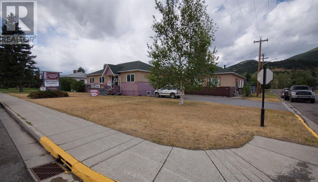 12161 20 Avenue, Blairmore, Alberta  T0K 0E0 - Photo 22 - A1030553
