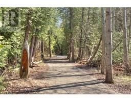 LT 58 ALGONQUIN Trail