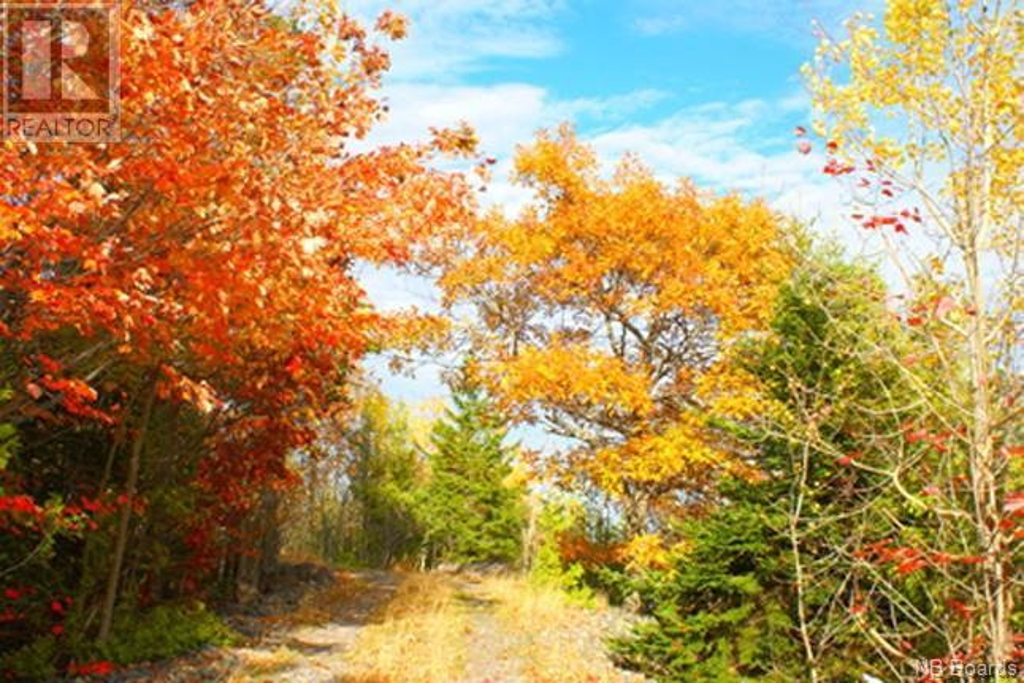 - Manners Sutton Road, Saint John, New Brunswick  E2K 4T1 - Photo 19 - NB048874