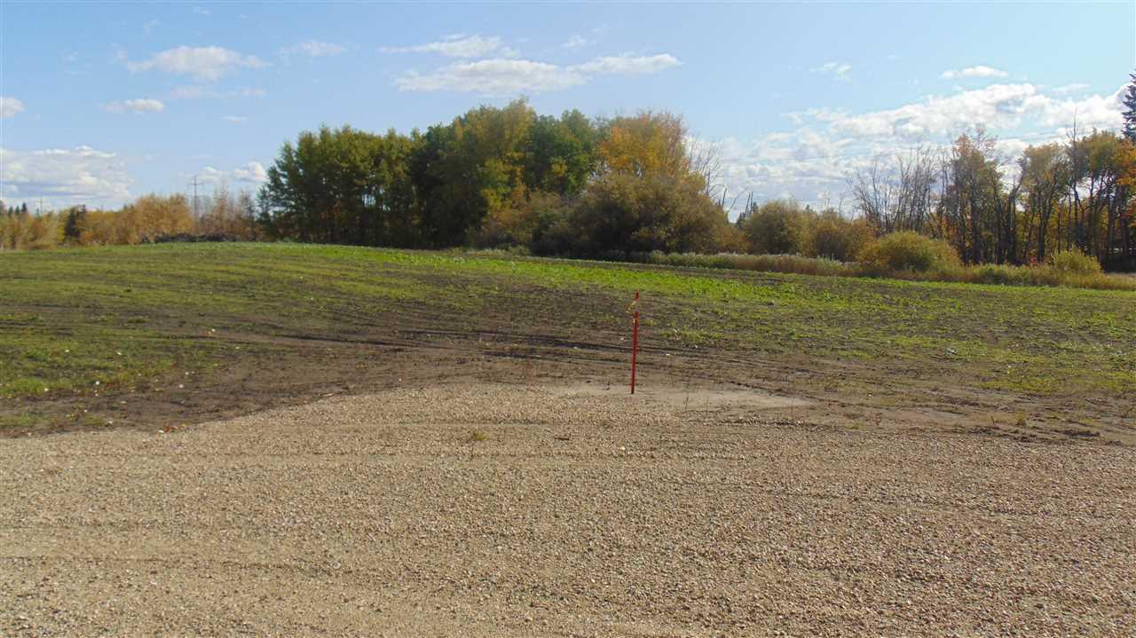#1 470 Twp 243a Rge Rd., Rural Wetaskiwin County, Alberta  T9A 1W8 - Photo 4 - E4202148